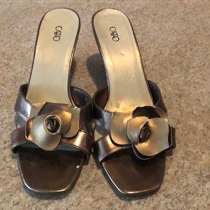 Cato bronze slides